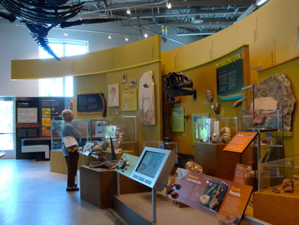 Linda Adams at the Fort Collins Museum of Discovery