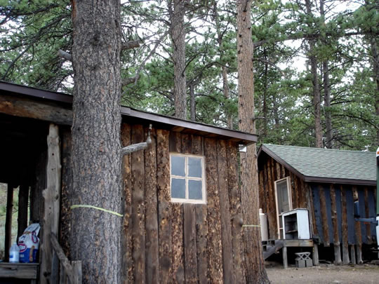 """Taylor Lodge"" and its companion cabin, both of which had rooms that were rented out over the course of their long history."